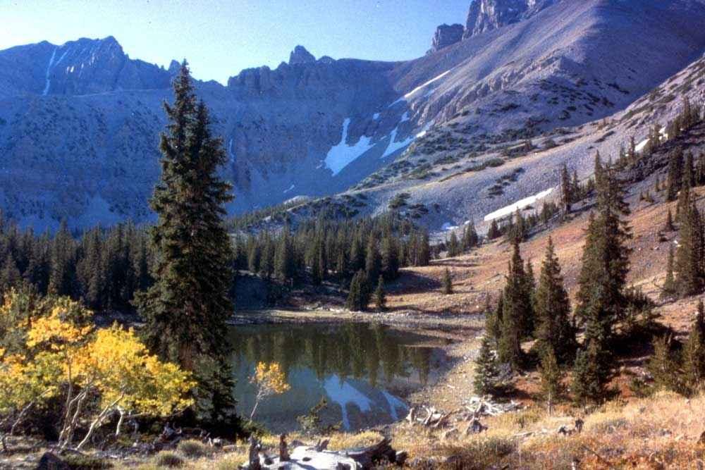 Great Basin National Park - near Baker, Nevada