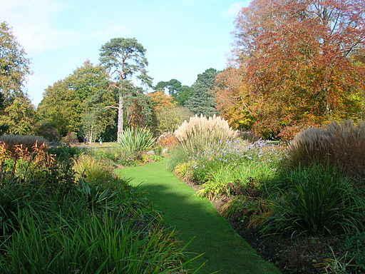 Exbury Garden