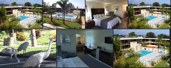 Top rated 4 Stunning budget hotels near to Fort Pierce Florida