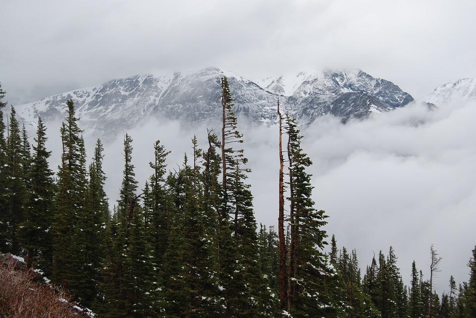 North America - Trail Ridge Road, 3.000 meters