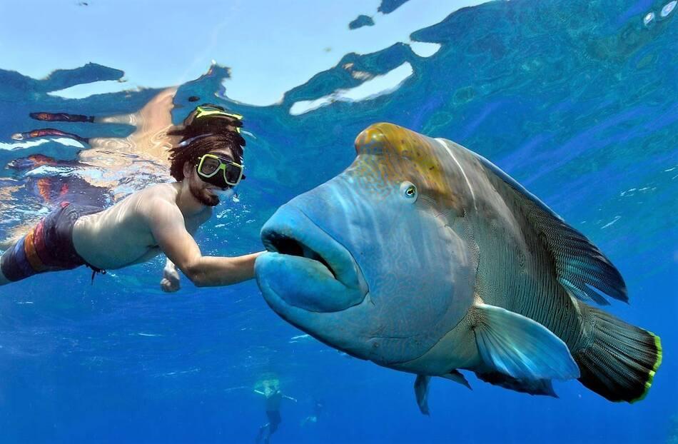 16. Norman Reef, Australia
