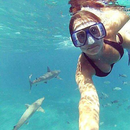 17. Bimini, Bahamas