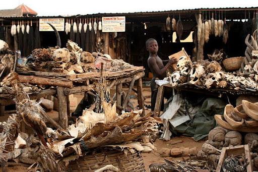 2. Akodessewa - the Voodoo Fetish Market, Togo