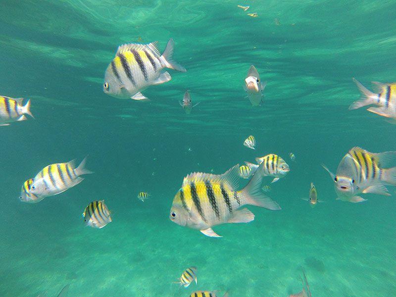 3. Montego Bay, Jamaica