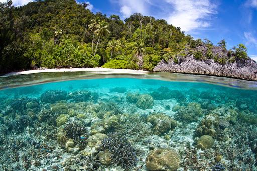 4. Manus, Papua New Guinea