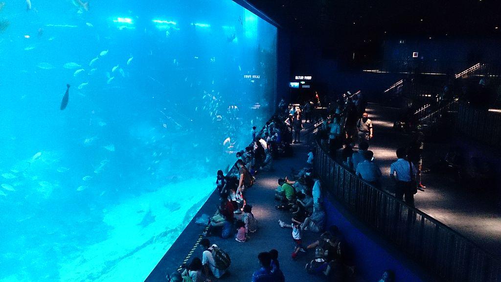 4. Marine Life Park, Singapore