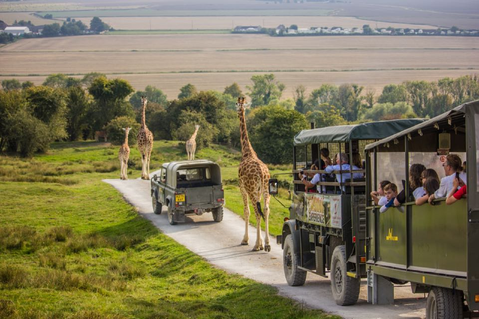 6. Port Lympne Wild Animal Park - 240 hectares