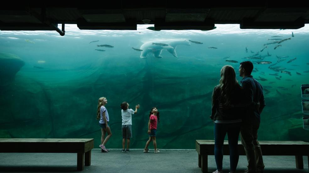 7. Columbus Zoo and Aquarium - 234 hectares