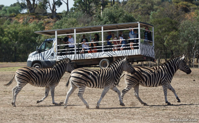 8. Werribee Open Range Zoo - 225 hectares