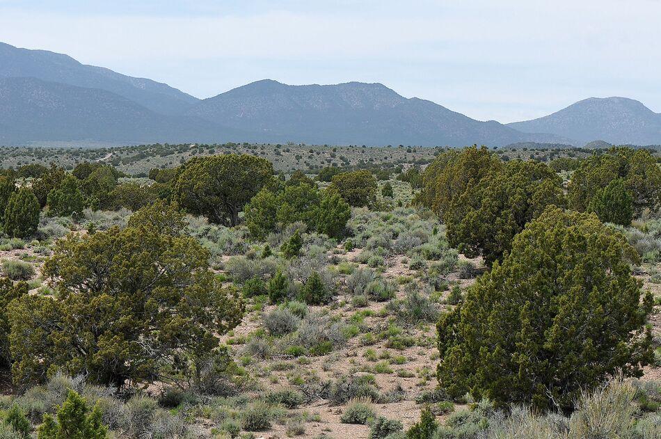 9. Great Basin - 492.000 km²