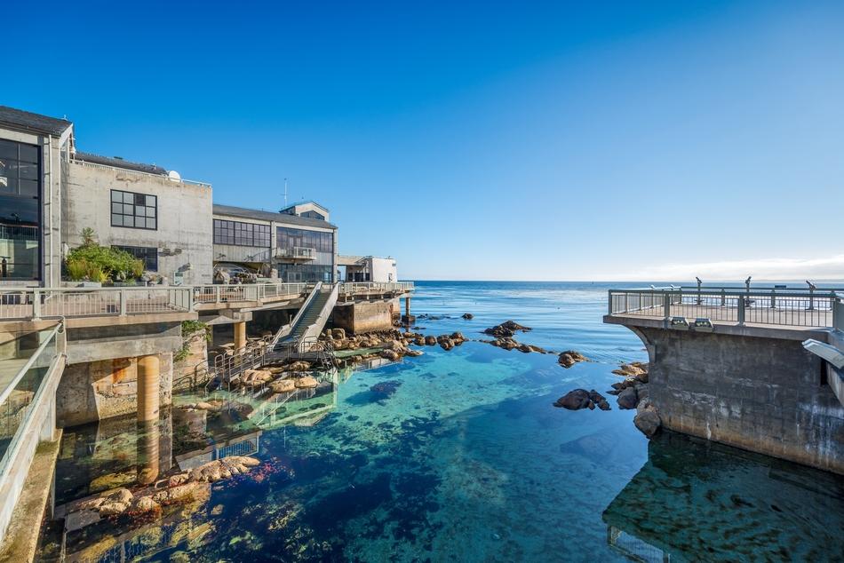 10. Monterey Bay Aquarium