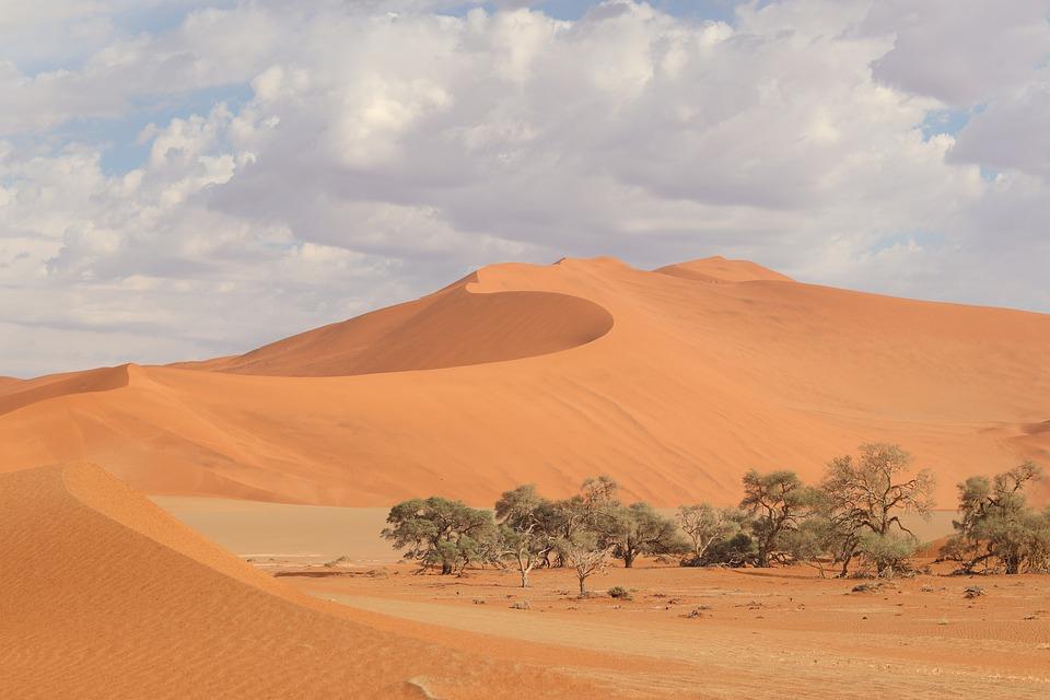 10. Namib Desert - 80,900 km2