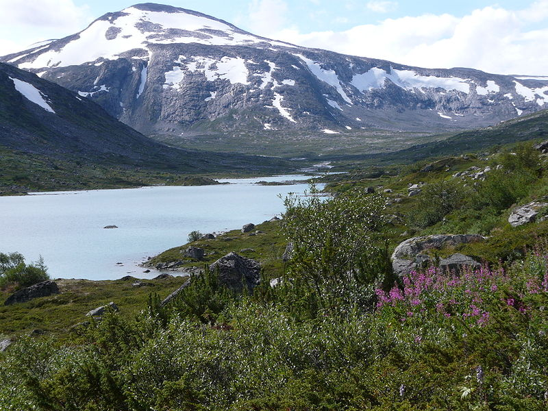 14. Rago National Park, Norway