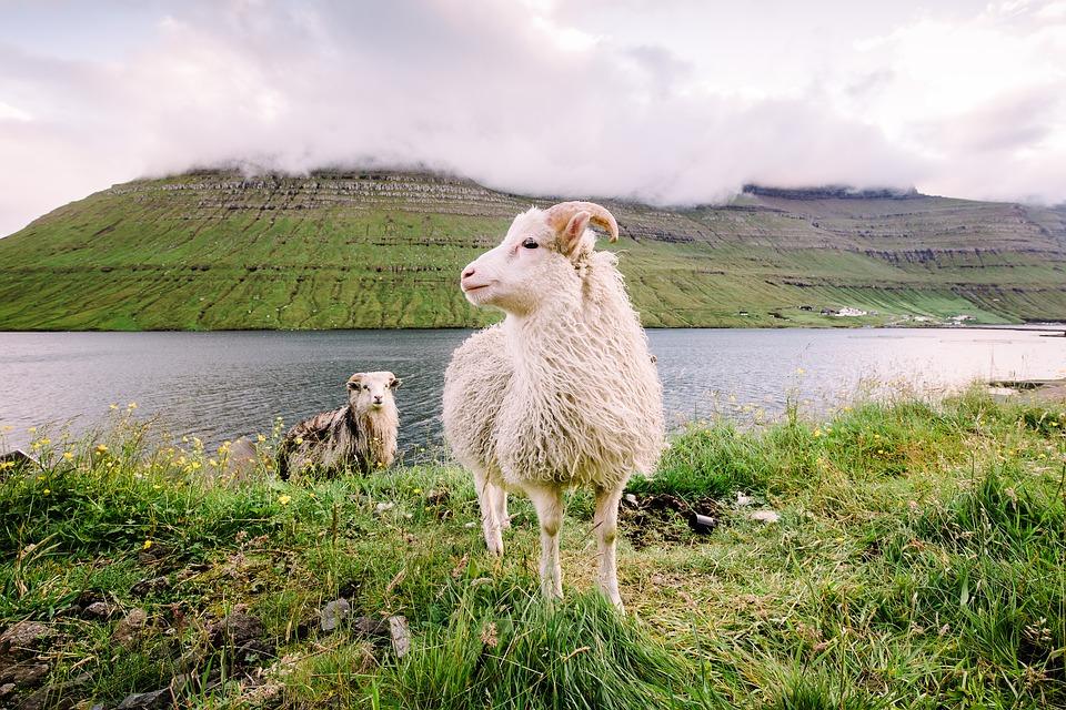 16. Faroe Islands, Denmark