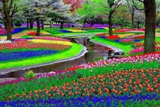 3. Keukenhof Garden - Lisse, The Netherlands