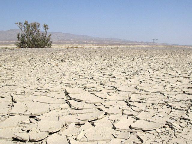6. Karakum Desert - 350,000 km2