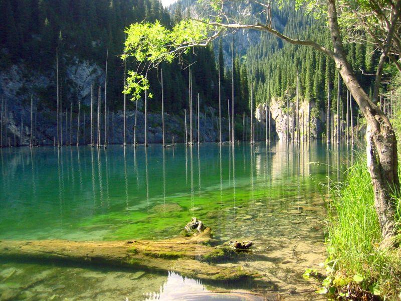 6. The Submerged Forest, Kaindy Lake, Kazakhstan