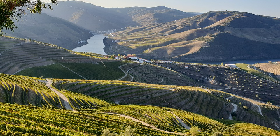 7. Douro Valley - Portugal