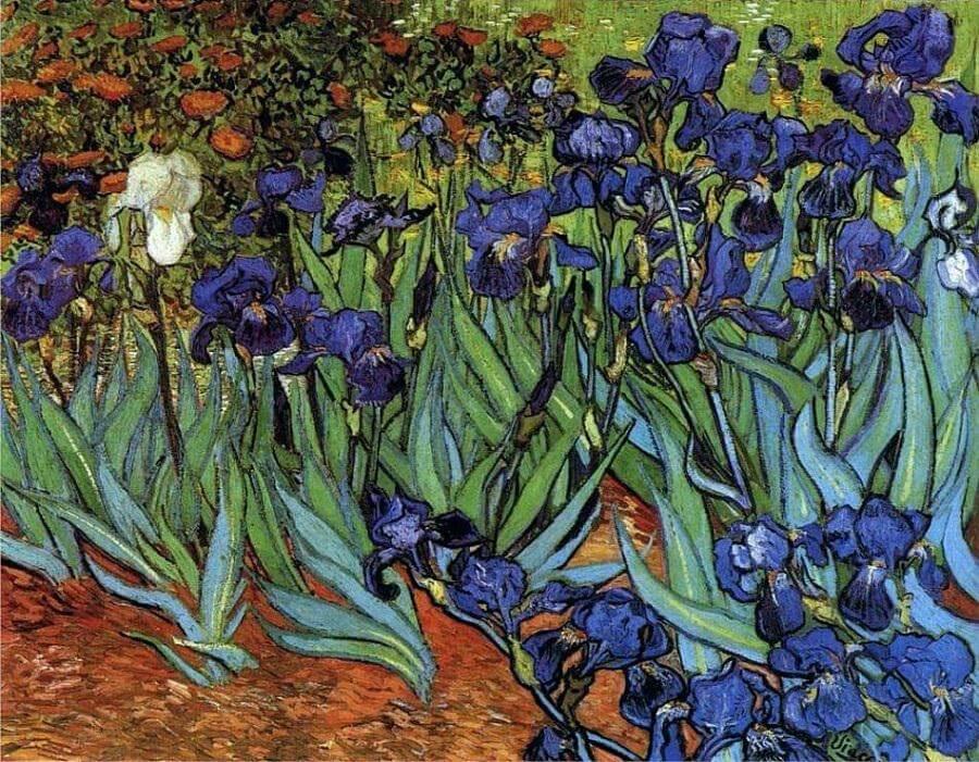 7. Iris: $101,2 million