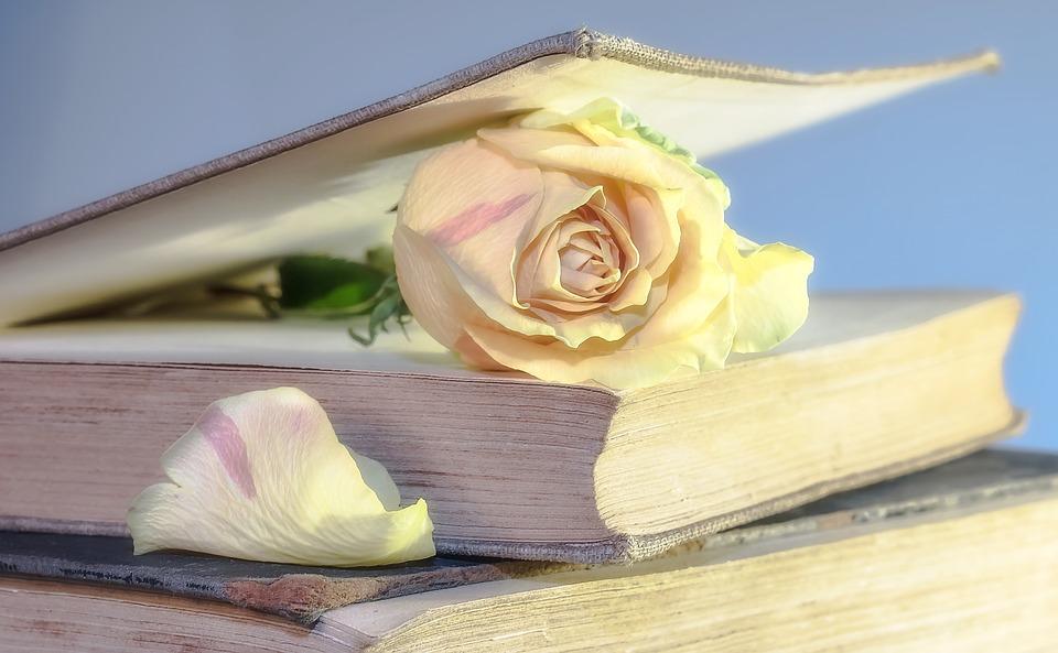 8. Books