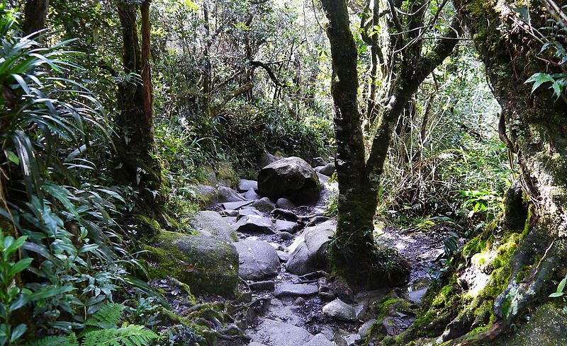 8. Kinabalu National Park