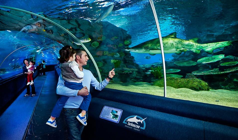 8. TurkuaZoo Aquarium