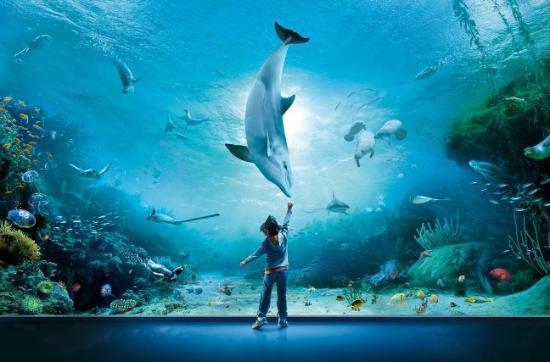 9. Aquarium of Genoa