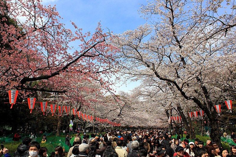 9. Ueno Park - Tokyo, Japan