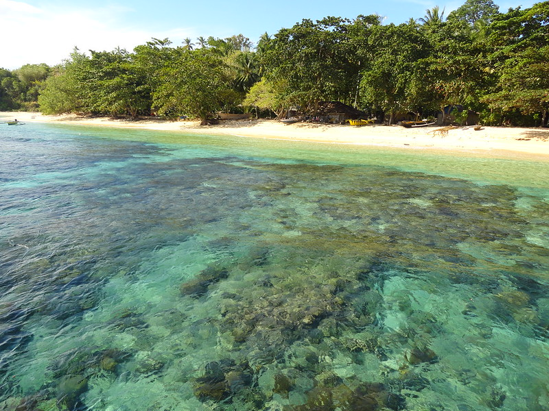 Sulawesi, between Borneo and the Moluccas