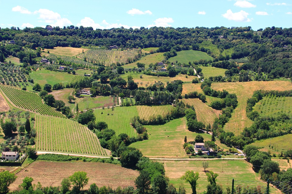 Todi - Orvieto Road, Umbria