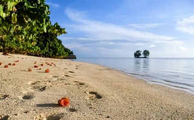 Amazing Facts About Seychelles