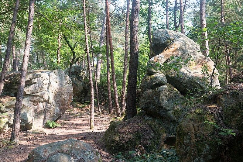 Forêt de Fontainebleau, France