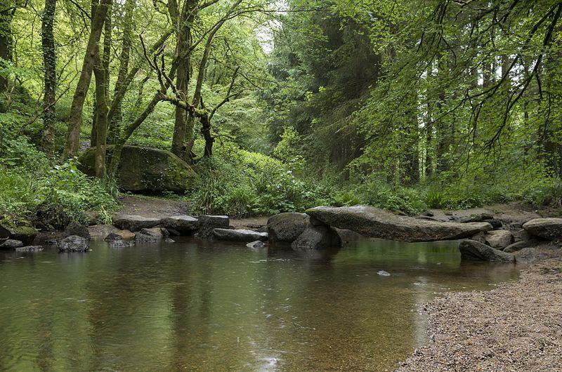Forêt de Lyon, France