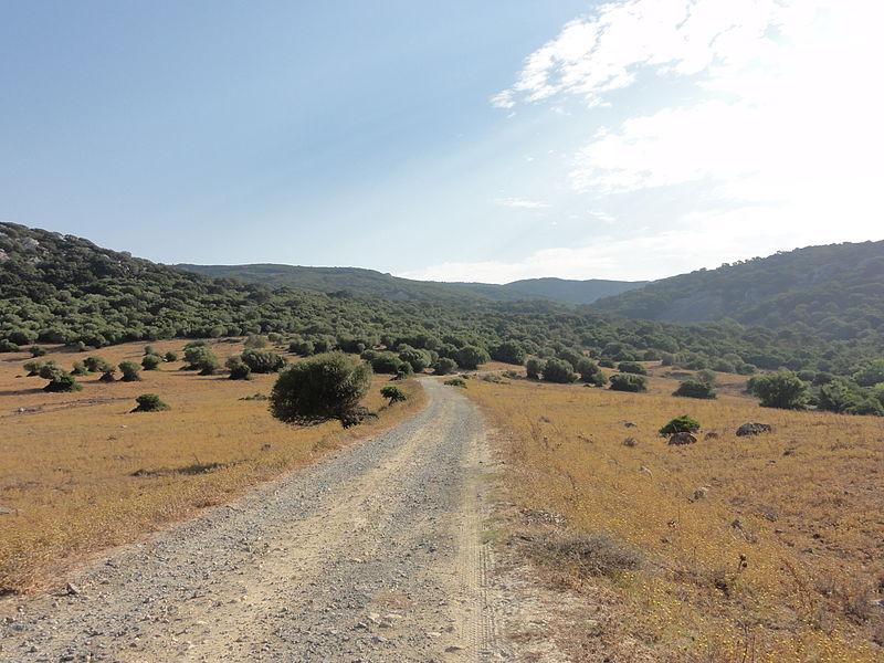 Los Alcornocales, Spain