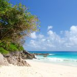What to Expect in Seychelles