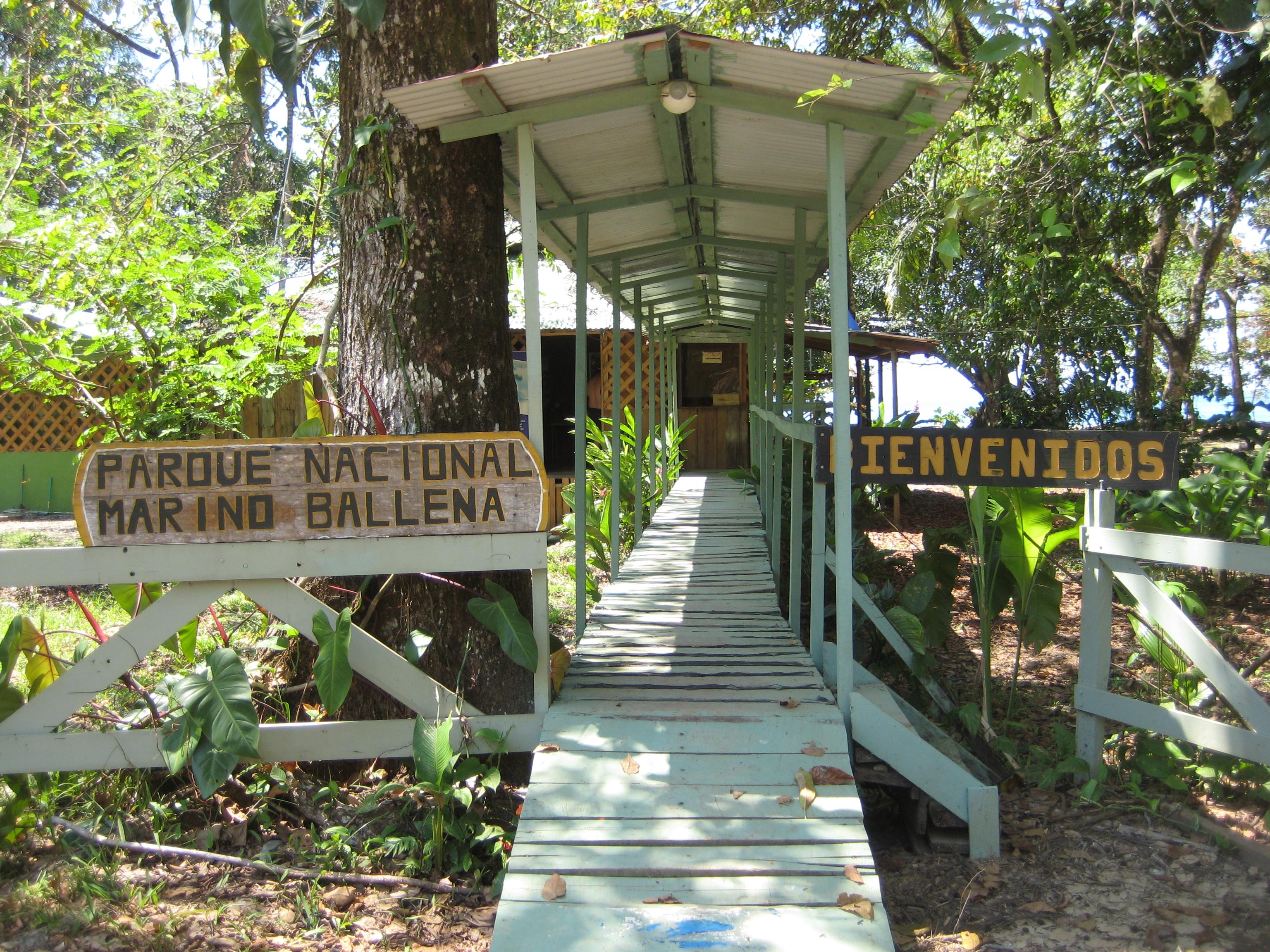 File:Costa Rica Nationalpark Marino Ballena.JPG - Wikimedia Commons