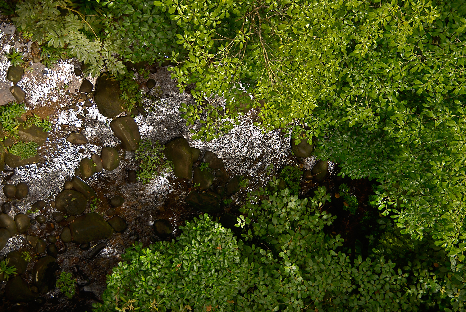 File:Stream, above from aerial tram (2532198671).jpg - Wikimedia Commons